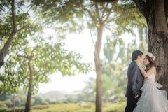 Wedding. Love between two people wedding Stock Image