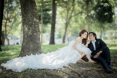 Wedding. Love between two people wedding Stock Images