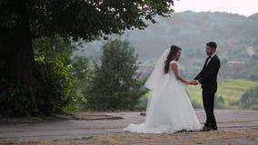 Wedding lovely couple stock footage