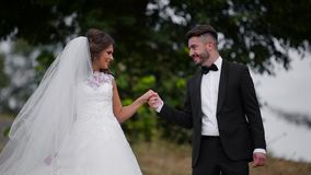 Wedding lovely couple stock video footage