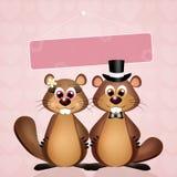 Wedding of marmots Stock Photography