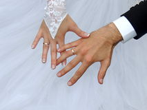 Wedding, marriage, rings Stock Image