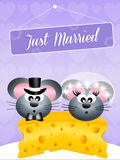Wedding of mice Stock Images