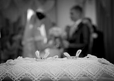 Wedding. A minute before the formation of family Royalty Free Stock Photography