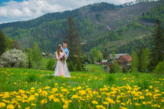 Wedding in mountains, A COUPLE IN LOVE, MOUNTAINS background, STANDING surounded dandelions, AMONG THE LAWN WITH THE GREEN GRASS, Royalty Free Stock Photography