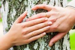 Wedding na floresta fotografia de stock