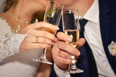 The bride and groom kiss hands with gold rings. The bride and groom kiss hands with golden rings are holding champagne glasses Royalty Free Stock Photos