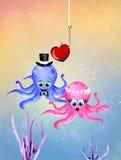 Wedding of octopus Stock Photo