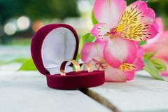 Wedding Offer. Beautiful Wedding Offer With Rings Stock Photos
