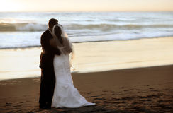 Free Wedding On The Beach Stock Photo - 6566740