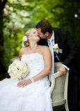 Wedding outdoor portraits Stock Images