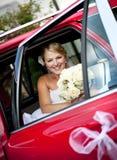 Wedding outdoor portraits Royalty Free Stock Photos