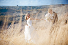 Wedding outdoors Stock Images