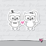 Wedding owls Royalty Free Stock Images