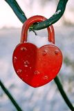 Wedding padlock in the winter. Wedding padlock hanging covered in frost, snow, frost royalty free stock photos