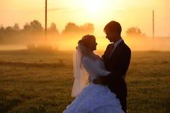 Wedding pair Royalty Free Stock Photo