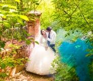 Wedding in the park. Blue Fog Stock Image