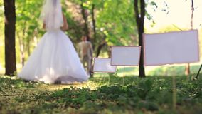 Wedding In A Park stock footage