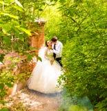 Wedding in the park. Fog Stock Image