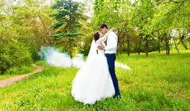 Wedding in the park. Fog Royalty Free Stock Photography