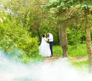 Wedding in the park. Fog Stock Images