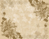 Wedding or Party invitation floral template Royalty Free Stock Photography