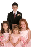 Wedding party kids far. Group of kids at wedding Stock Images