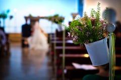 Wedding path Stock Image