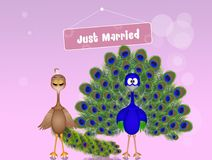 Wedding of peacocks. Cute illustration of Wedding of peacocks Stock Photos