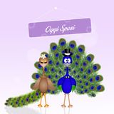 Wedding of peacocks. Illustration of Wedding of peacocks Royalty Free Stock Images