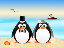 Wedding penguins Royalty Free Stock Photos