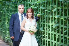 Wedding people with green fence, copyspace Royalty Free Stock Images