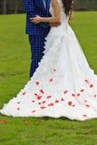 Wedding petals Stock Photo