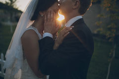Wedding photo Royalty Free Stock Images