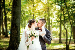 Wedding photo,  happy bride and groom together Stock Images