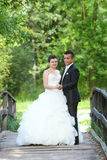 Wedding photo in nature Royalty Free Stock Photos