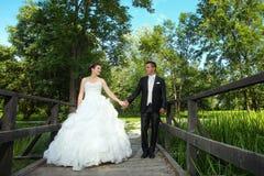 Wedding photo of newlyweds Royalty Free Stock Photography
