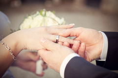 Wedding photo. Wedding rings, hand and flowers in the wedding photo Royalty Free Stock Photos