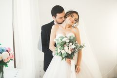 Wedding photo shoot of the newlyweds couple in a beautiful hotel posing near window stock images
