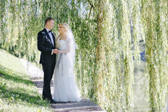 Wedding photo shoot outdoors Royalty Free Stock Photo