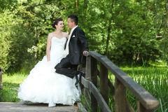Wedding photo on wooden bridge in nature Royalty Free Stock Images