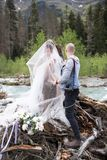 A wedding photographer takes pictures of the bride and groom in nature, the photographer in action stock images