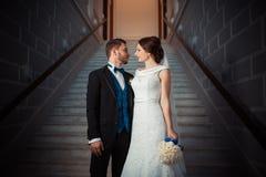 Wedding photography beautiful couple Stock Images