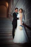 Wedding photography beautiful couple Stock Image