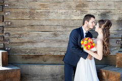 Wedding photography with beautiful wife and groom Royalty Free Stock Image