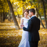 Wedding photography is very beautiful couple Royalty Free Stock Photo