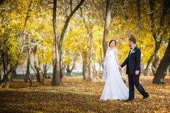 Wedding photography is very beautiful couple Royalty Free Stock Image