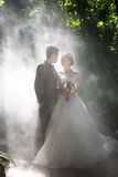 Wedding photos in the rainforest Royalty Free Stock Image