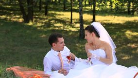 Wedding Picnic. Bride and groom on a picnic for two stock video footage