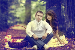 Wedding picnic in park Royalty Free Stock Photo